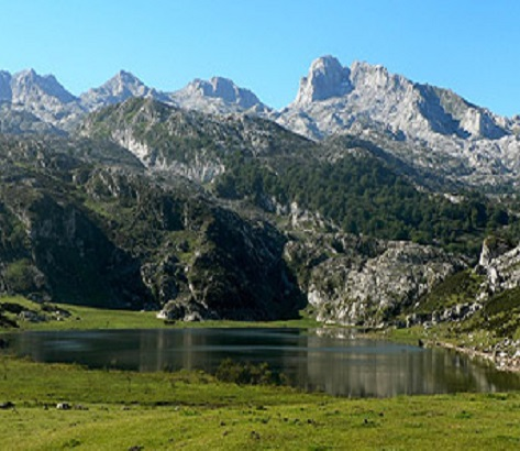praticiens Midi Pyrenees .