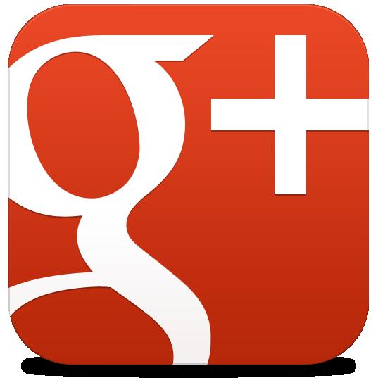 P&P Conseil google+